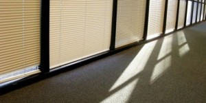 Kwikfynd Clear PVC Blinds Window Blinds Solutions